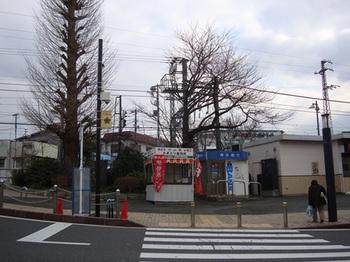 DSC09363_R.JPG